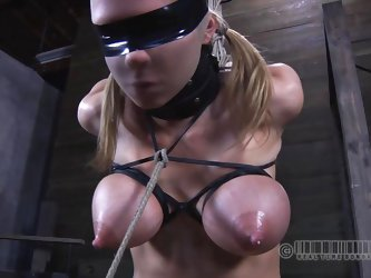 Sexy Rain has her hands tied up and is prepared for bondage humiliation. Having her tits tortured with elastic gums on her nipples, they are about to