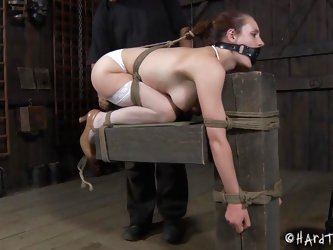 Iona Grace has a beautiful body and how the executor tied her in that position is just wonderful. The sweet milf stays there with a device that keeps