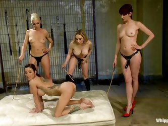Hot girls decide to punish one of their sexy girlfriends. She stays on all fours and gets her ass whipped with sticks. She likes it so much and starts